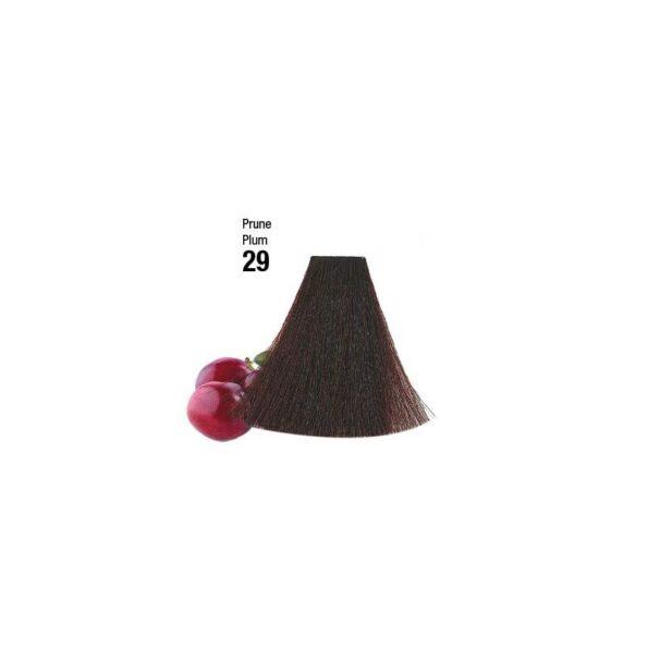 Coloration-n°-29-Couleurs-Fruit-Prune.jpg